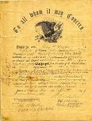 21st Kentucky Infantry Eagle Discharge