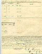1st Kentucky Infantry document